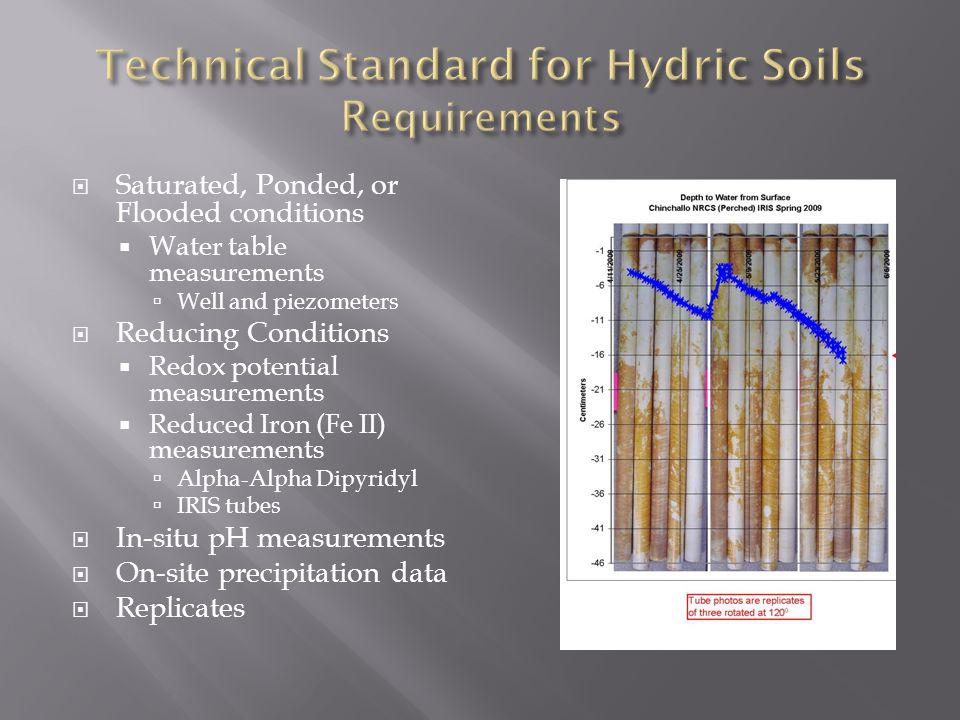 Technical Standard for Hydric Soils Requirements