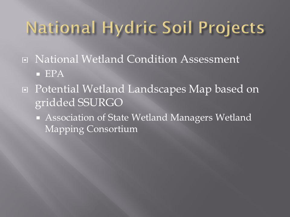 National Hydric Soil Projects