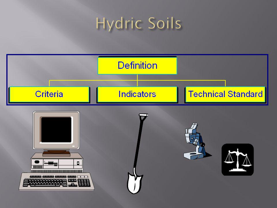 Hydric Soils All hydric soils must meet the definition.