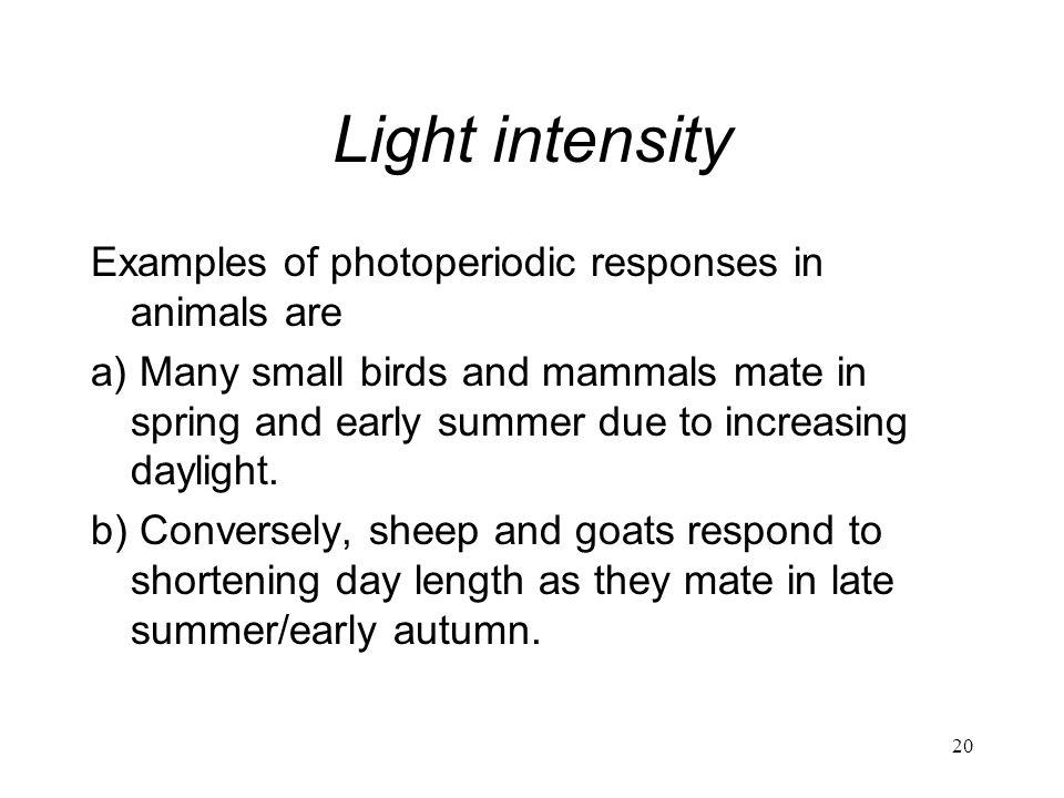 Light intensity Examples of photoperiodic responses in animals are