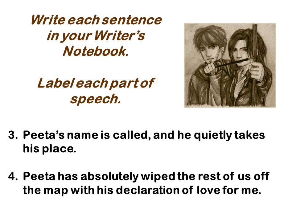 in your Writer's Notebook. Label each part of speech.
