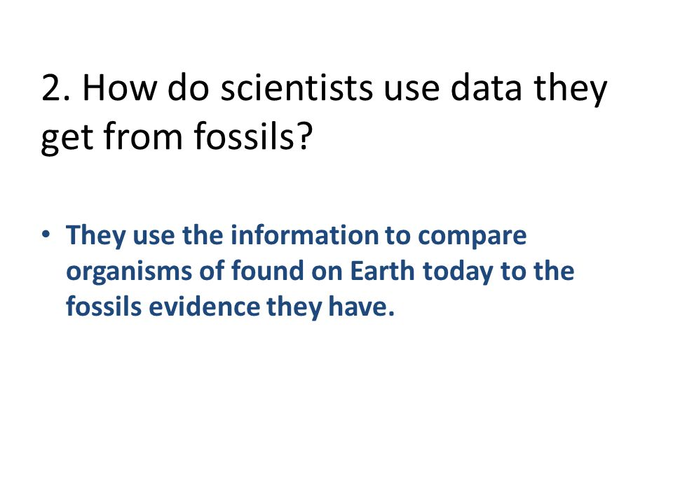 2. How do scientists use data they get from fossils
