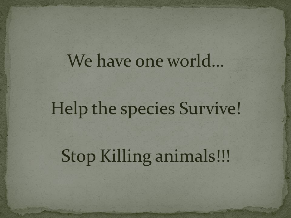 We have one world… Help the species Survive! Stop Killing animals!!!