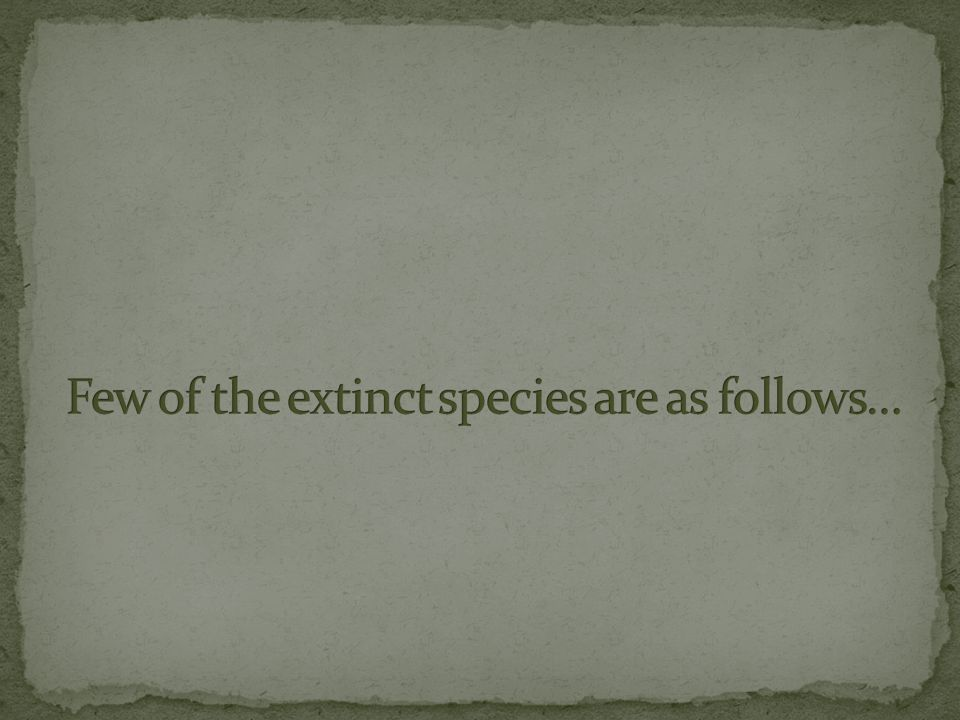 Few of the extinct species are as follows…
