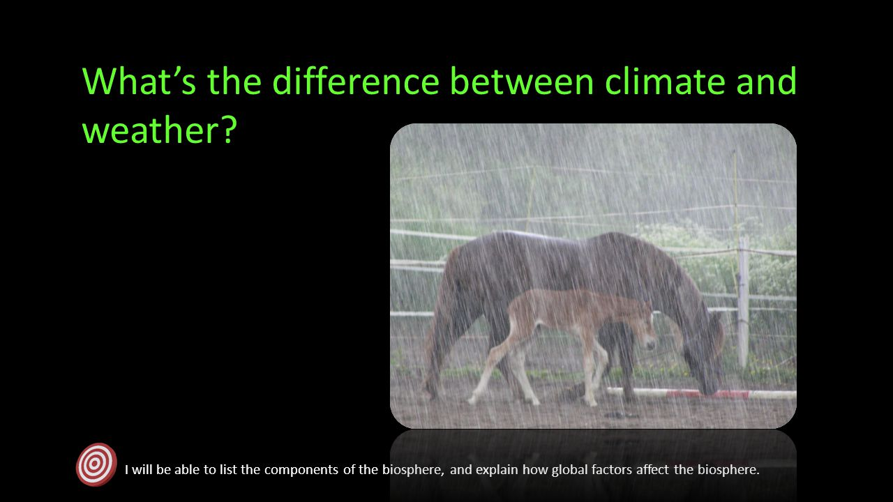 What's the difference between climate and weather