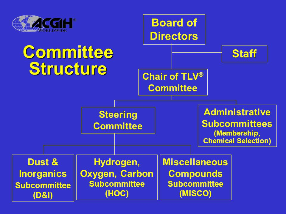 Committee Structure Board of Directors Staff Chair of TLV® Committee