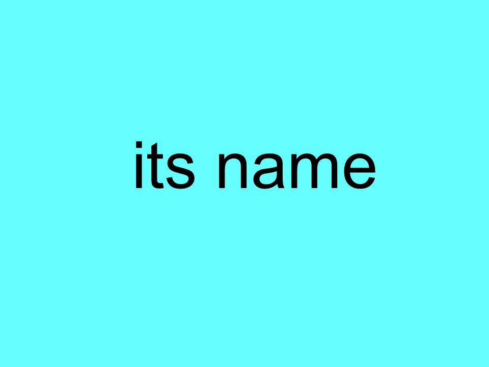 its name