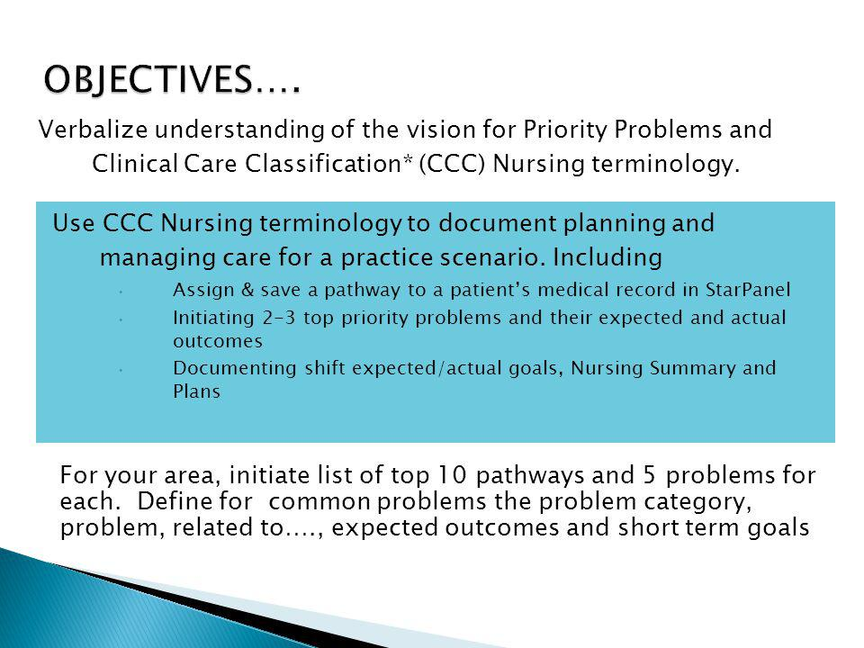 OBJECTIVES…. Verbalize understanding of the vision for Priority Problems and Clinical Care Classification* (CCC) Nursing terminology.