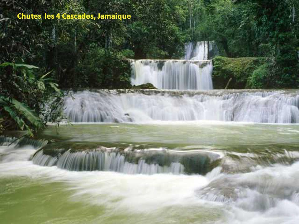 Chutes les 4 Cascades, Jamaique