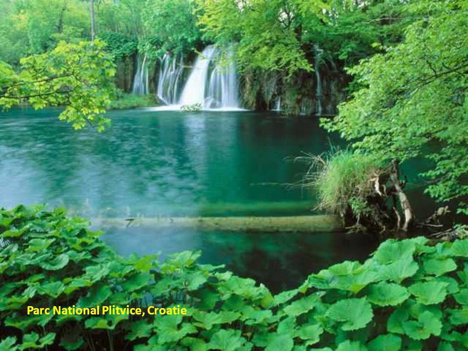 Parc National Plitvice, Croatie