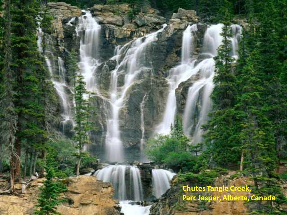 Chutes Tangle Creek, Parc Jasper, Alberta, Canada