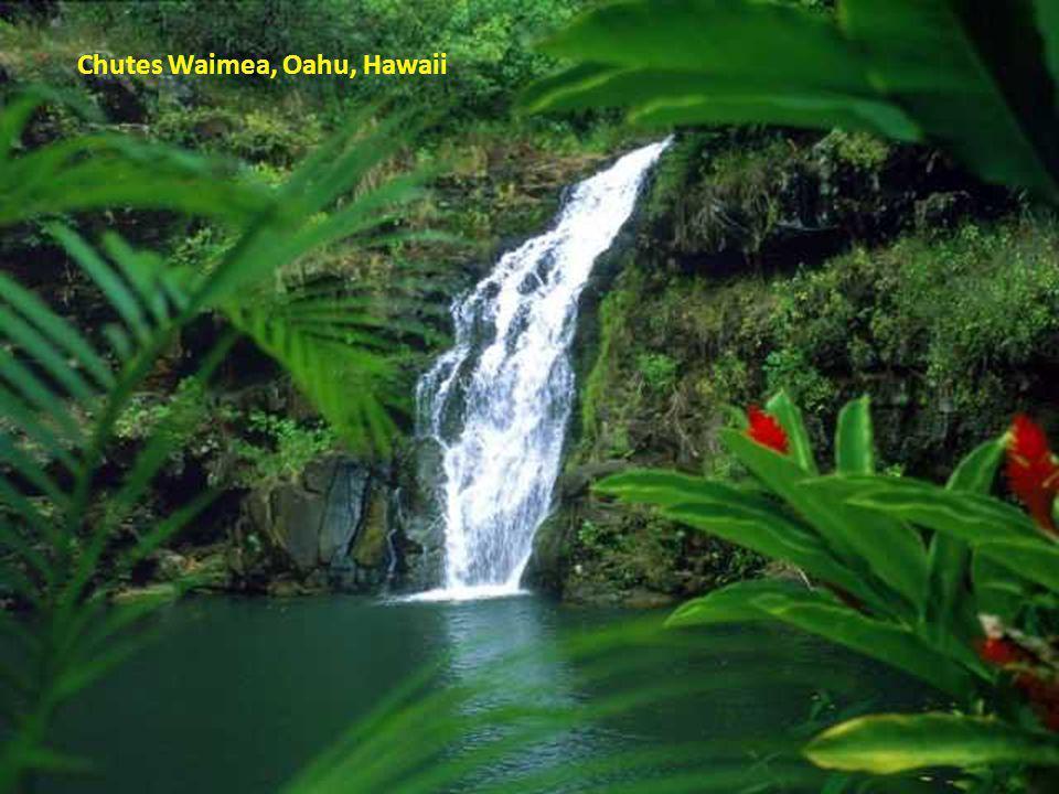 Chutes Waimea, Oahu, Hawaii