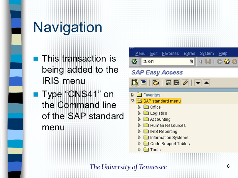 Navigation This transaction is being added to the IRIS menu