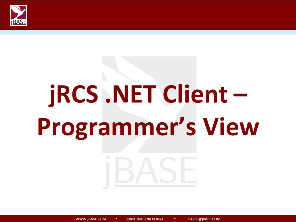 jRCS .NET Client – Programmer's View