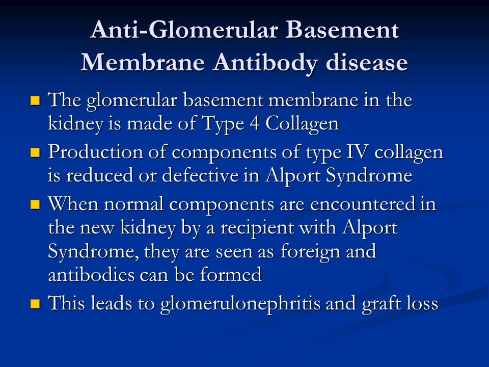 Anti-Glomerular Basement Membrane Antibody disease