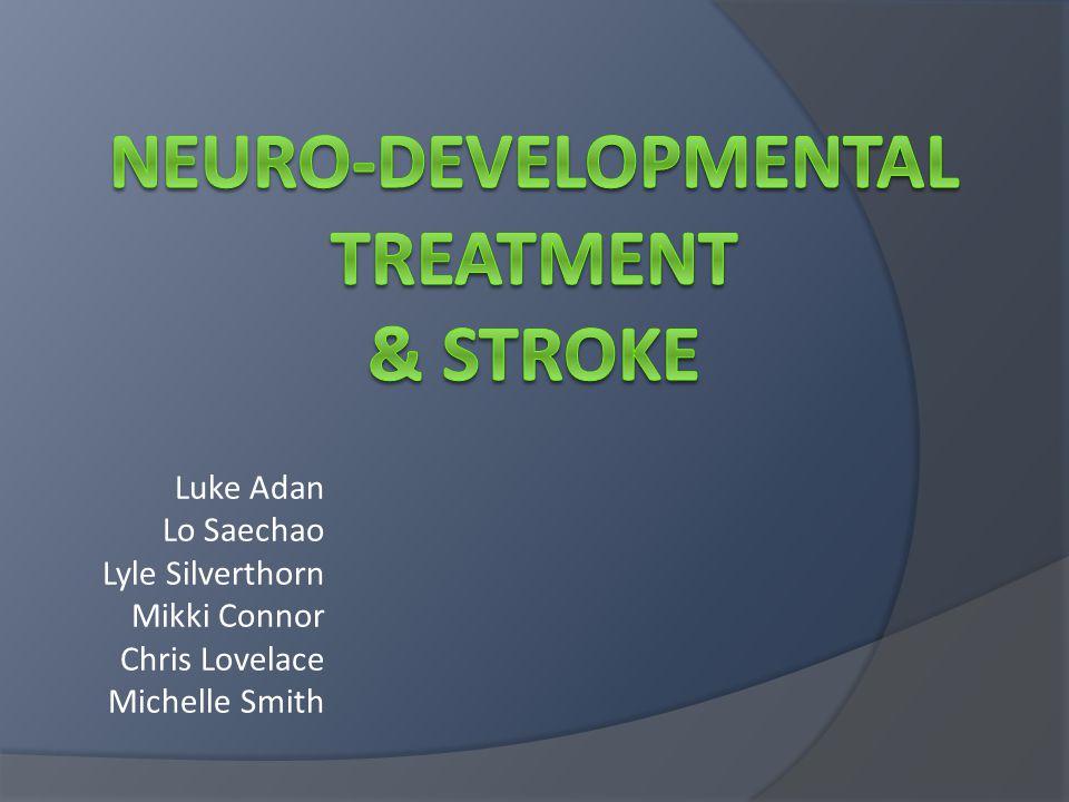 Neuro-Developmental Treatment & Stroke