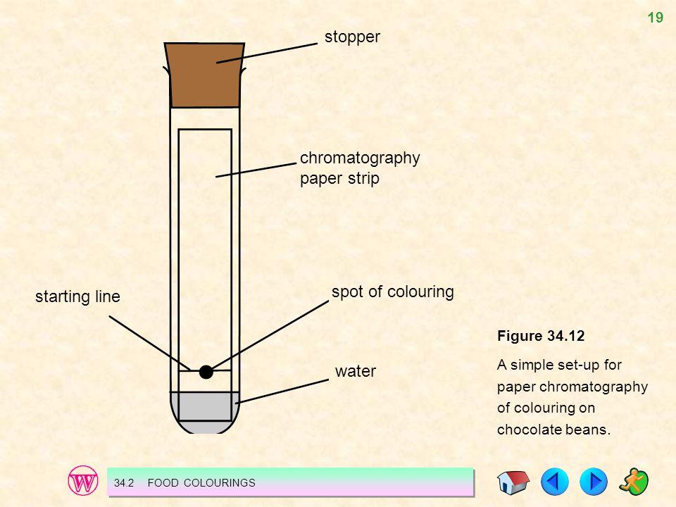 chromatography paper strip stopper
