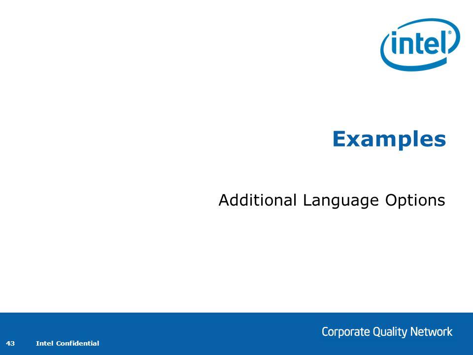 Additional Language Options