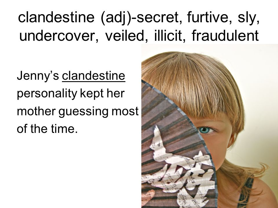 clandestine (adj)-secret, furtive, sly, undercover, veiled, illicit, fraudulent