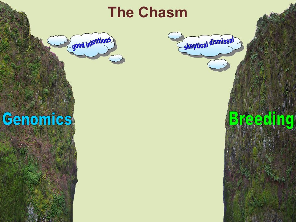 The Chasm good intentions skeptical dismissal Genomics Breeding