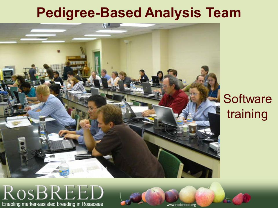 Pedigree-Based Analysis Team