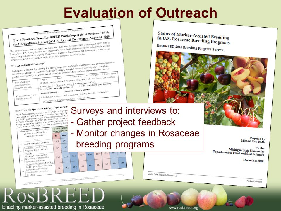 Evaluation of Outreach