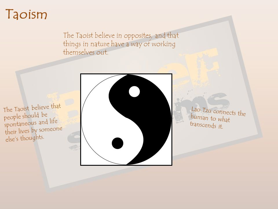 Taoism The Taoist believe in opposites, and that things in nature have a way of working themselves out.
