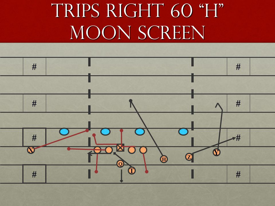Trips Right 60 H Moon Screen