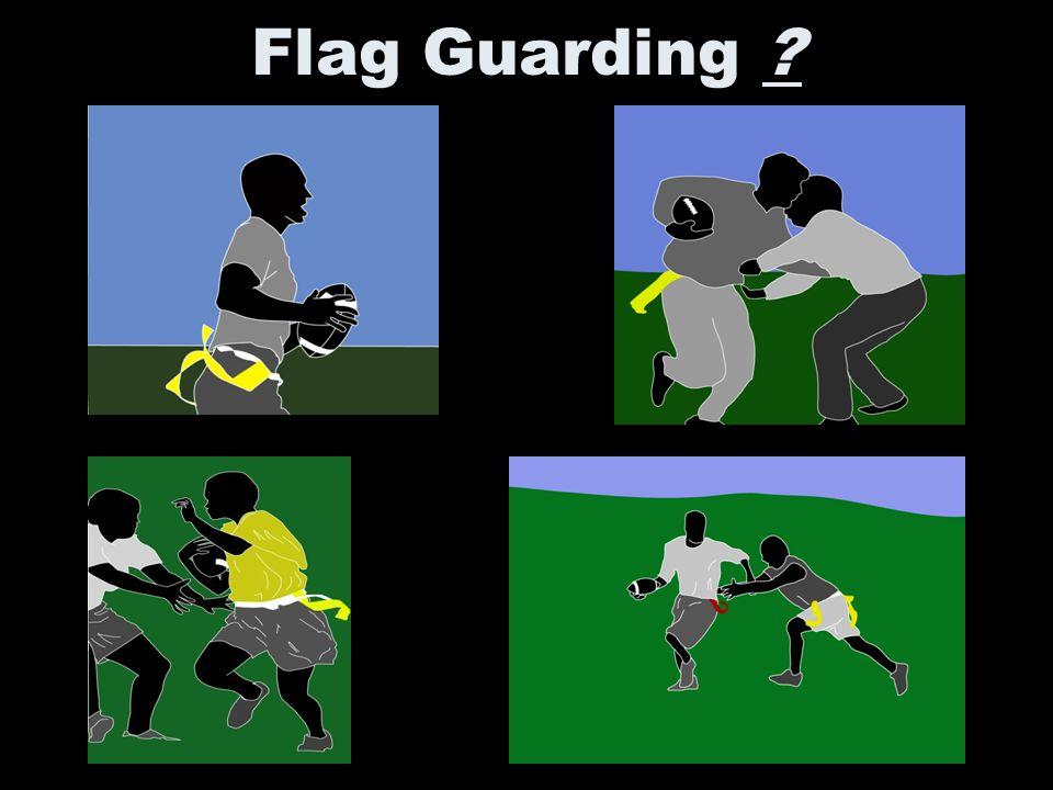 Flag Guarding