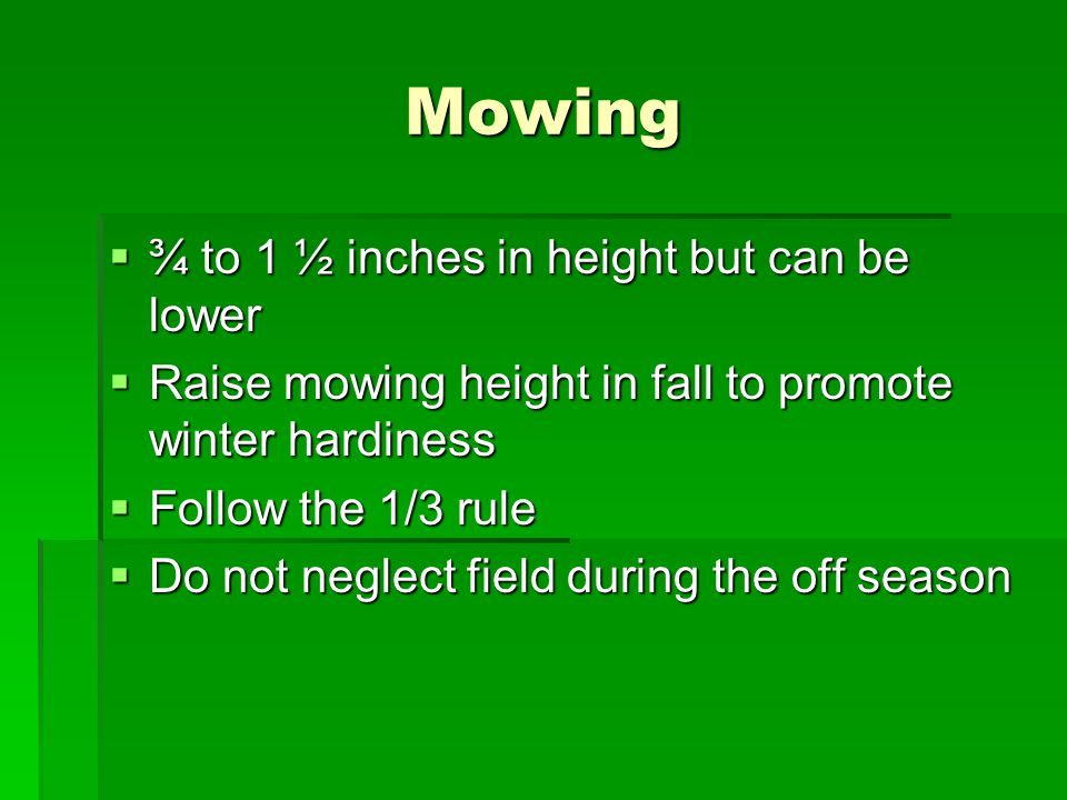 Mowing ¾ to 1 ½ inches in height but can be lower