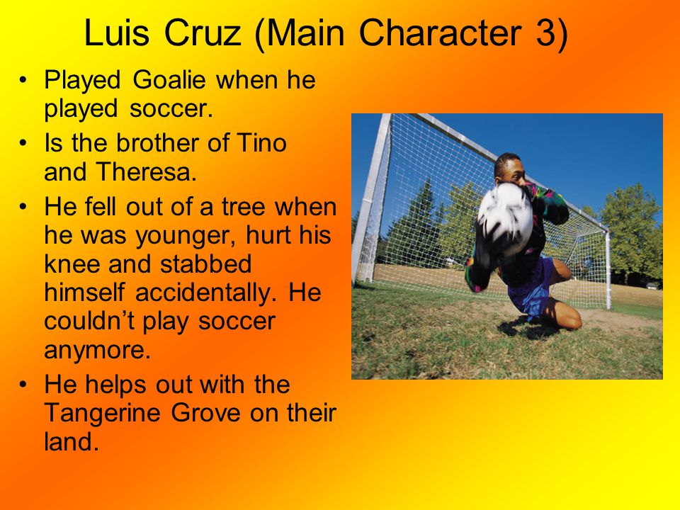 Luis Cruz (Main Character 3)