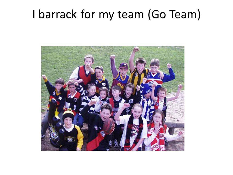 I barrack for my team (Go Team)