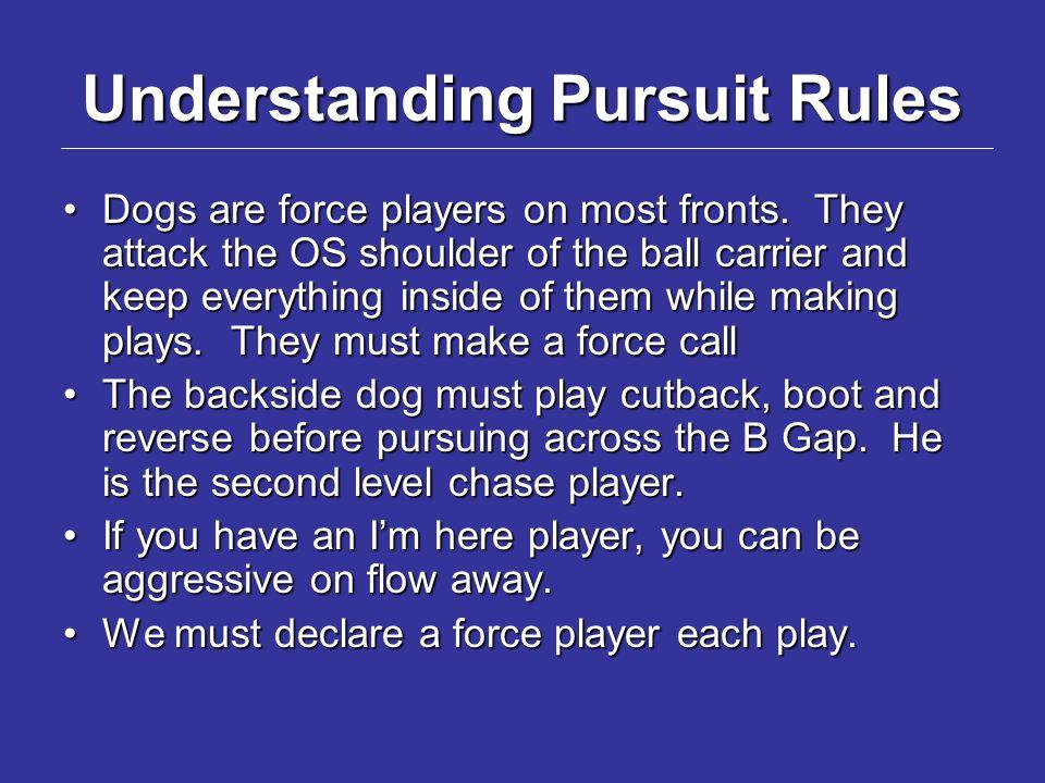 Understanding Pursuit Rules