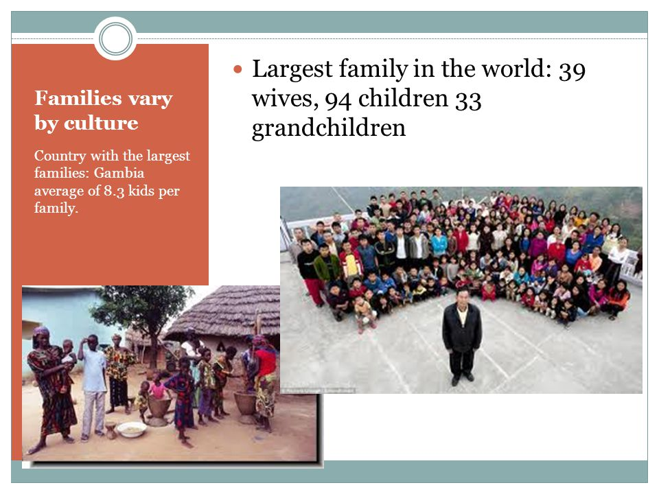 Families vary by culture