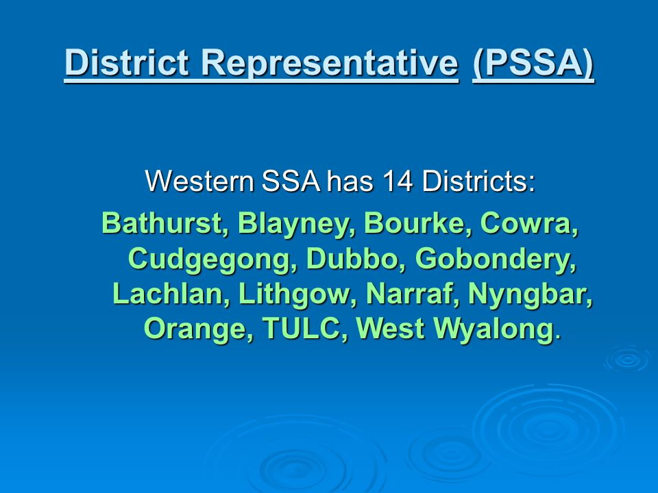 District Representative (PSSA)