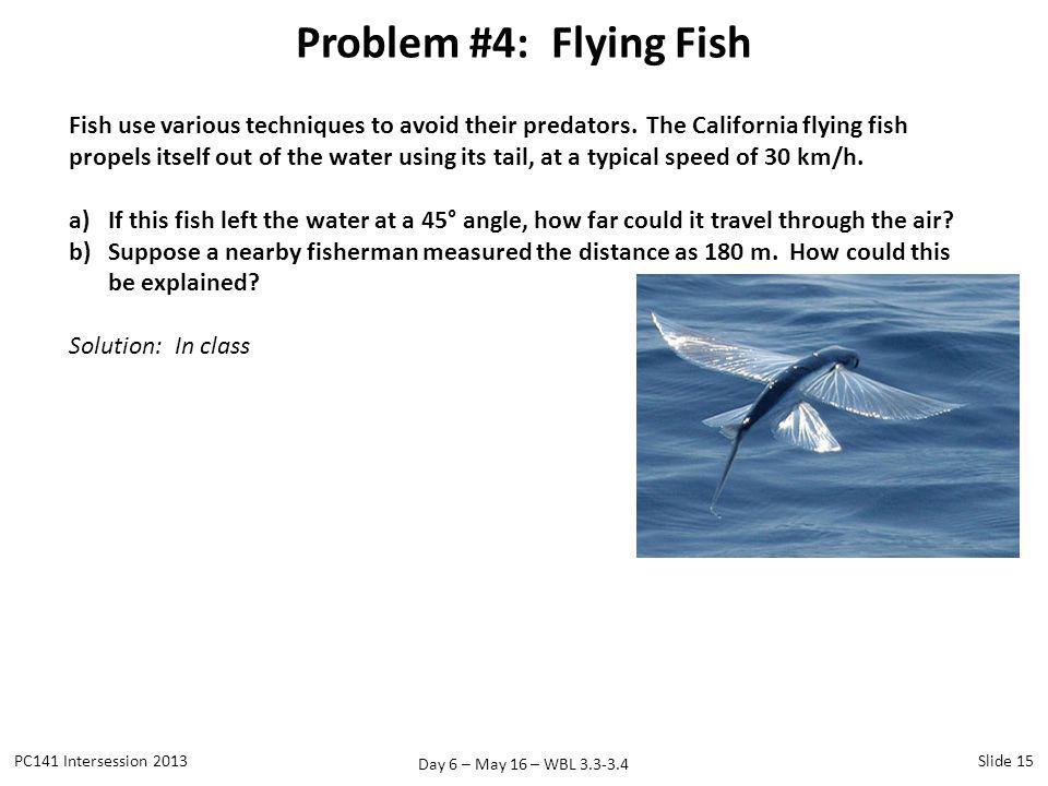 Problem #4: Flying Fish