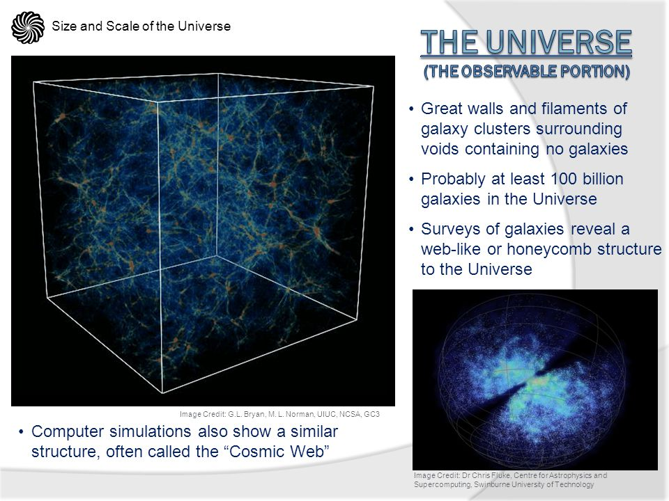 The Universe (the observable portion)
