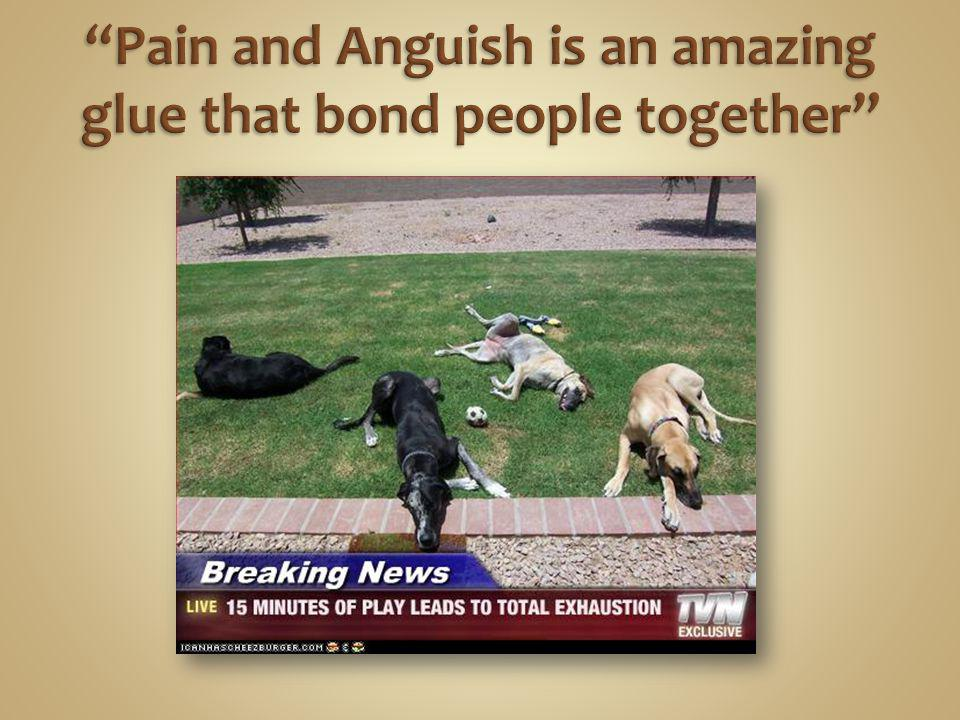 Pain and Anguish is an amazing glue that bond people together
