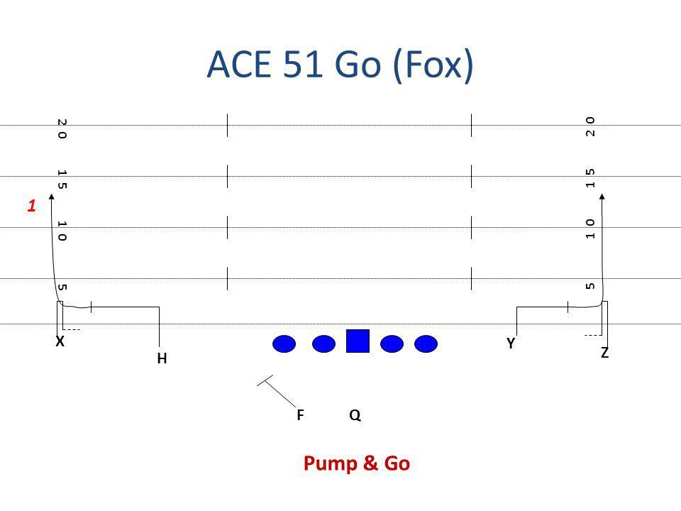 ACE 51 Go (Fox) 2 0 2 0 1 5 1 5 1 1 0 1 0 5 5 X Y Z H F Q Pump & Go