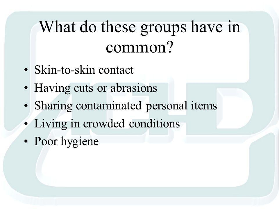 What do these groups have in common