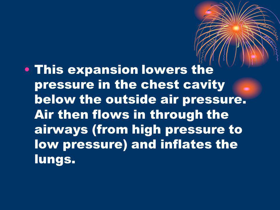 This expansion lowers the pressure in the chest cavity below the outside air pressure.