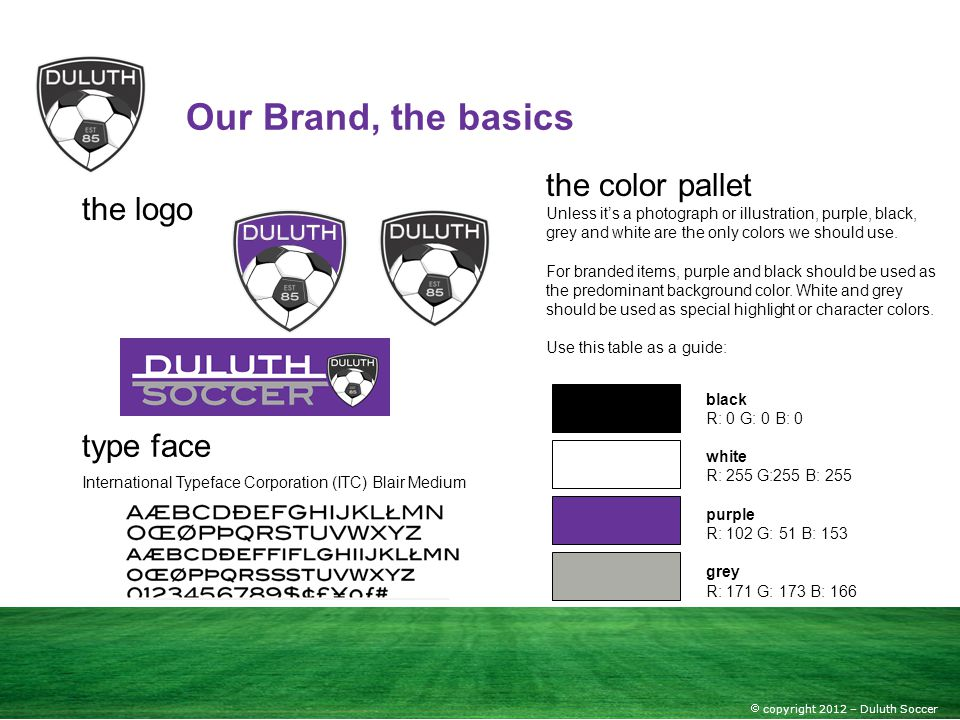 Our Brand, the basics the color pallet the logo type face
