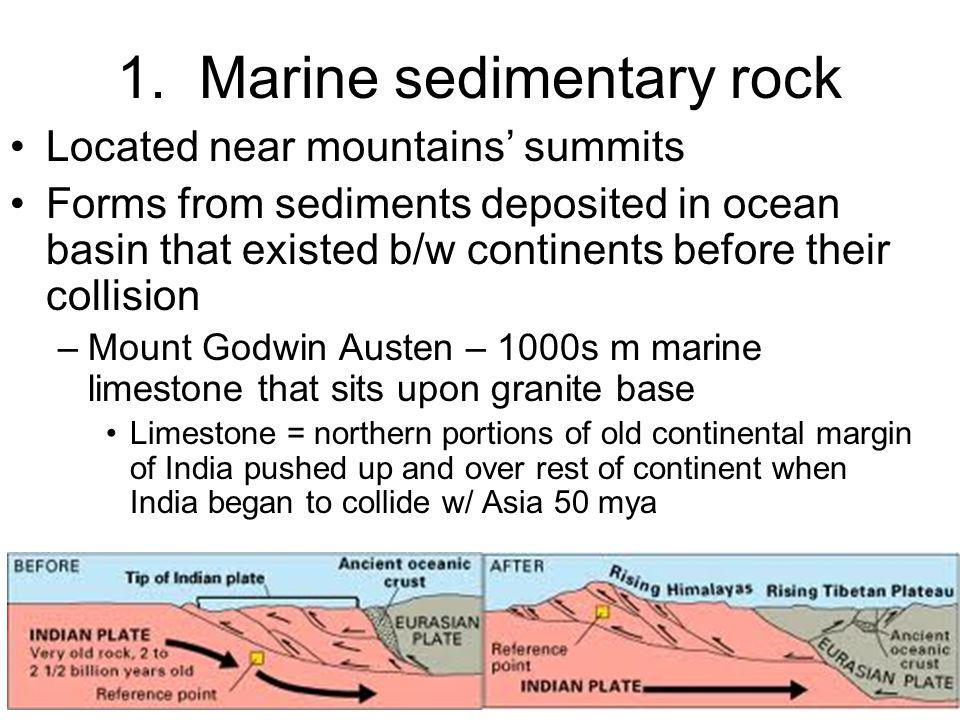 1. Marine sedimentary rock