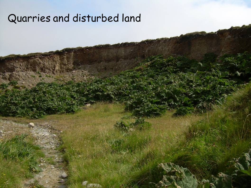 Quarries and disturbed land