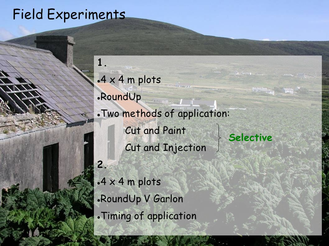 Field Experiments 1. 4 x 4 m plots RoundUp Two methods of application: