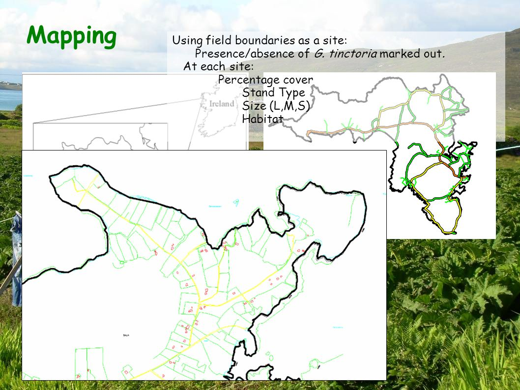 Mapping Using field boundaries as a site: