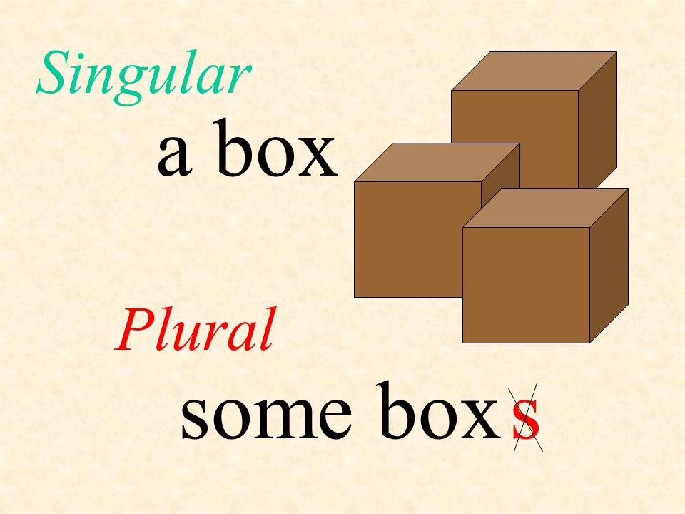 Singular and plural ppt download for Plural of floor