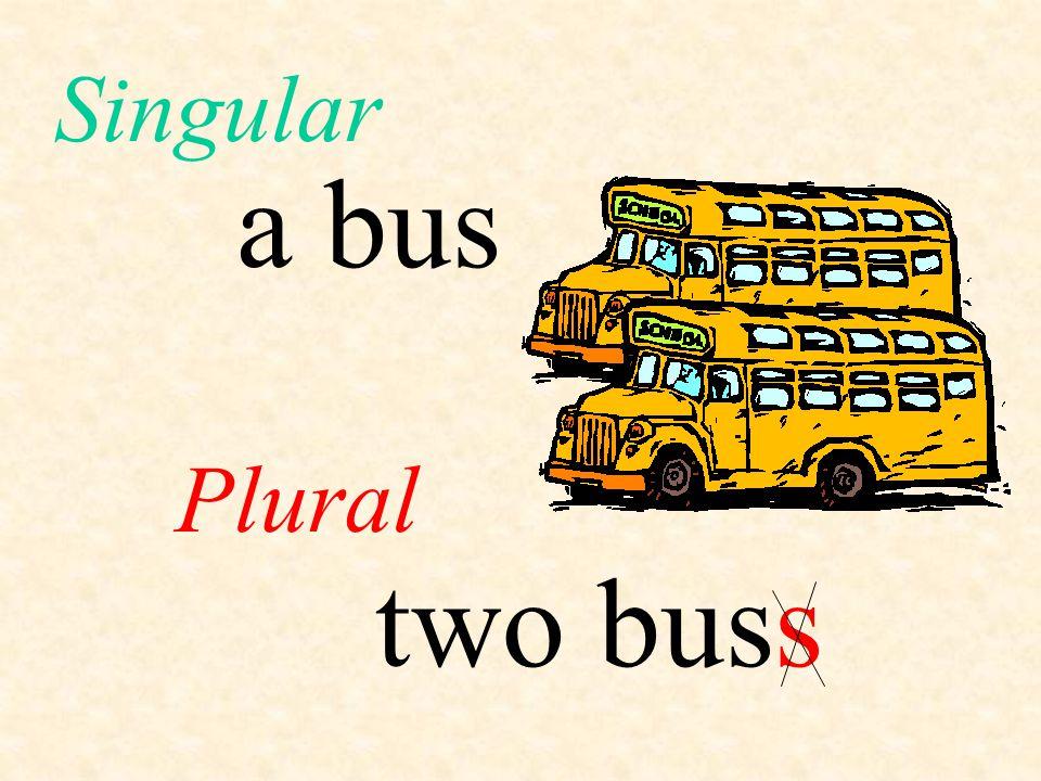 Singular a bus Plural two bus s