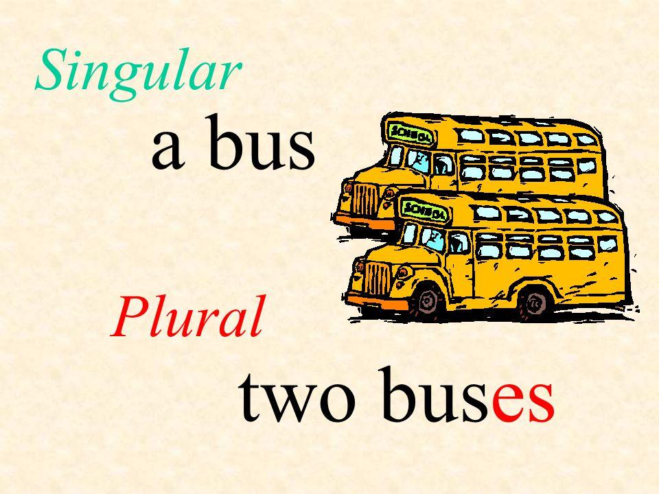 Singular a bus Plural two bus es
