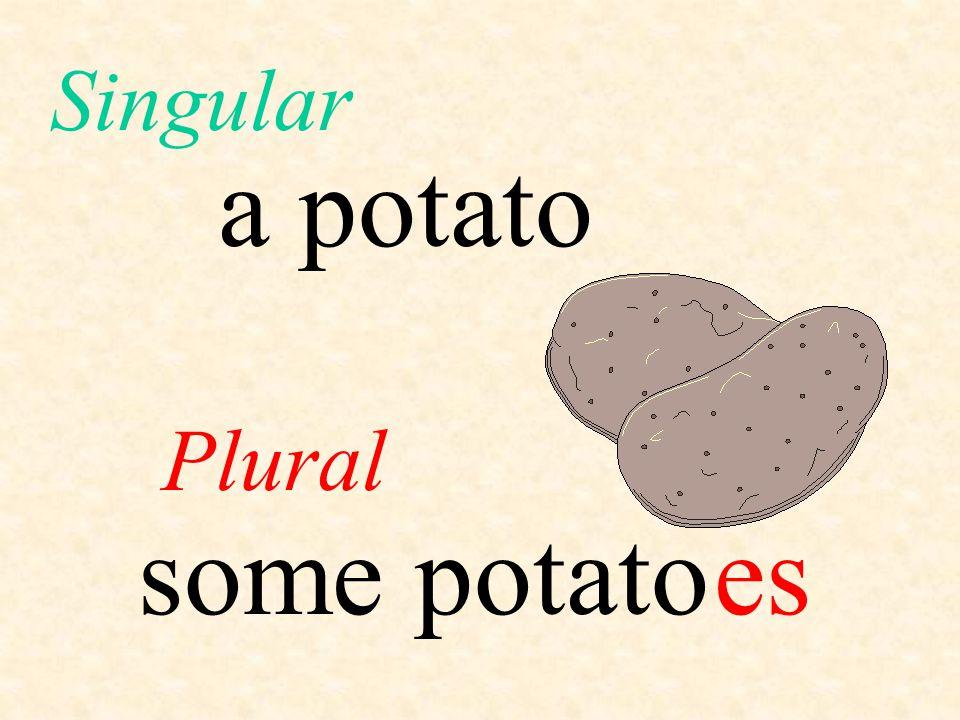 Singular a potato Plural some potato es